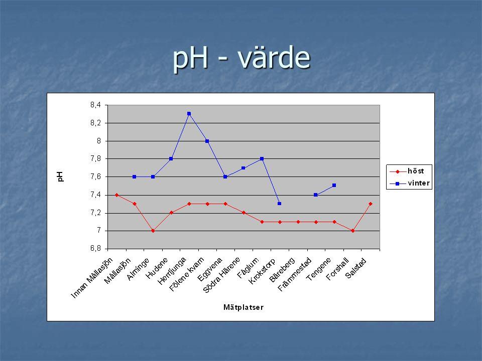 pH - värde
