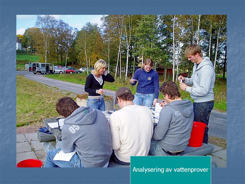 Analysering av vattenprover