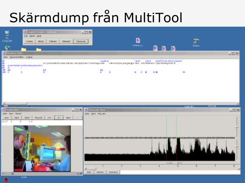 15Databasteori 2004Växjö universitet: MSI Skärmdump från MultiTool