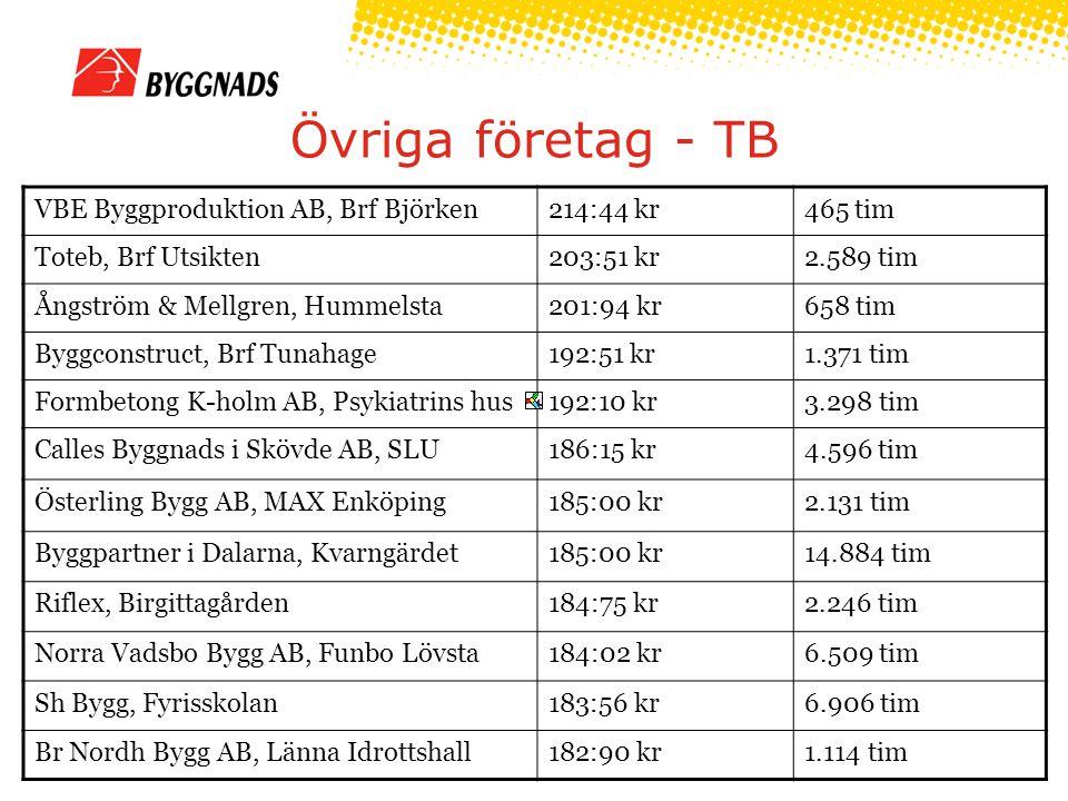 Övriga företag - TB VBE Byggproduktion AB, Brf Björken214:44 kr465 tim Toteb, Brf Utsikten203:51 kr2.589 tim Ångström & Mellgren, Hummelsta201:94 kr65