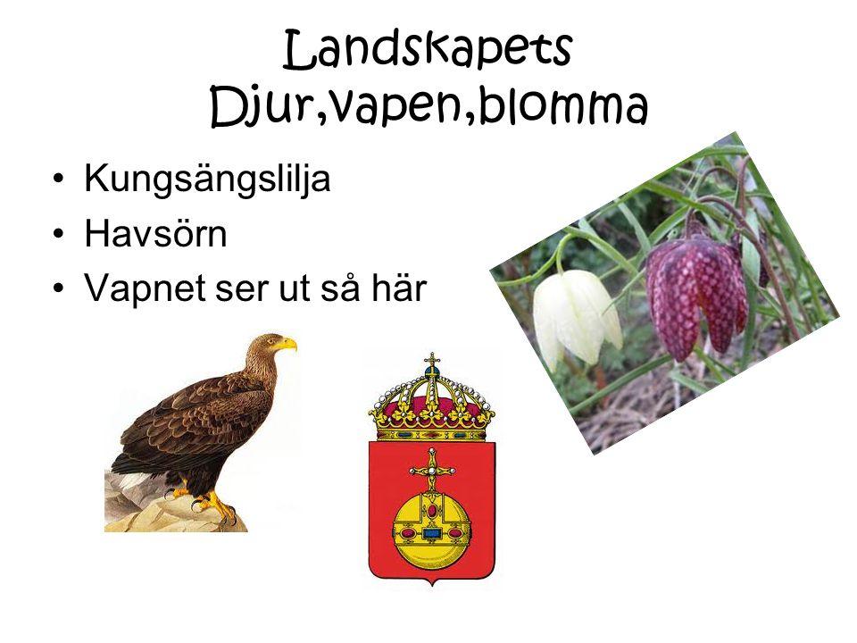 Landskapets Djur,vapen,blomma Kungsängslilja Havsörn Vapnet ser ut så här