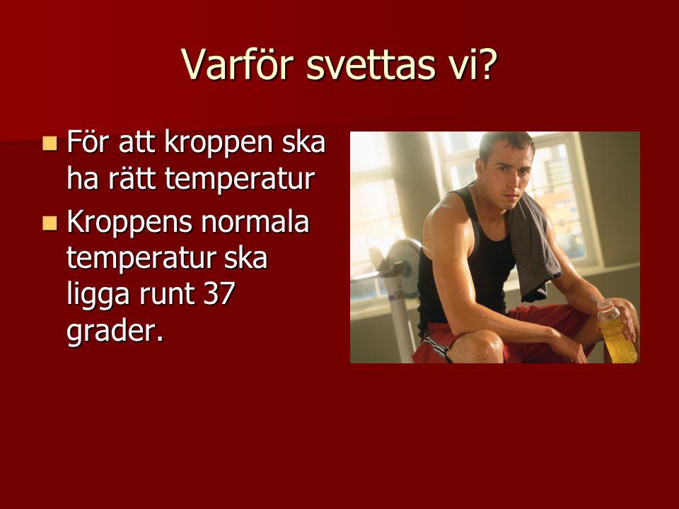 Varför svettas vi? För att kroppen ska ha rätt temperatur För att kroppen ska ha rätt temperatur Kroppens normala temperatur ska ligga runt 37 grader.