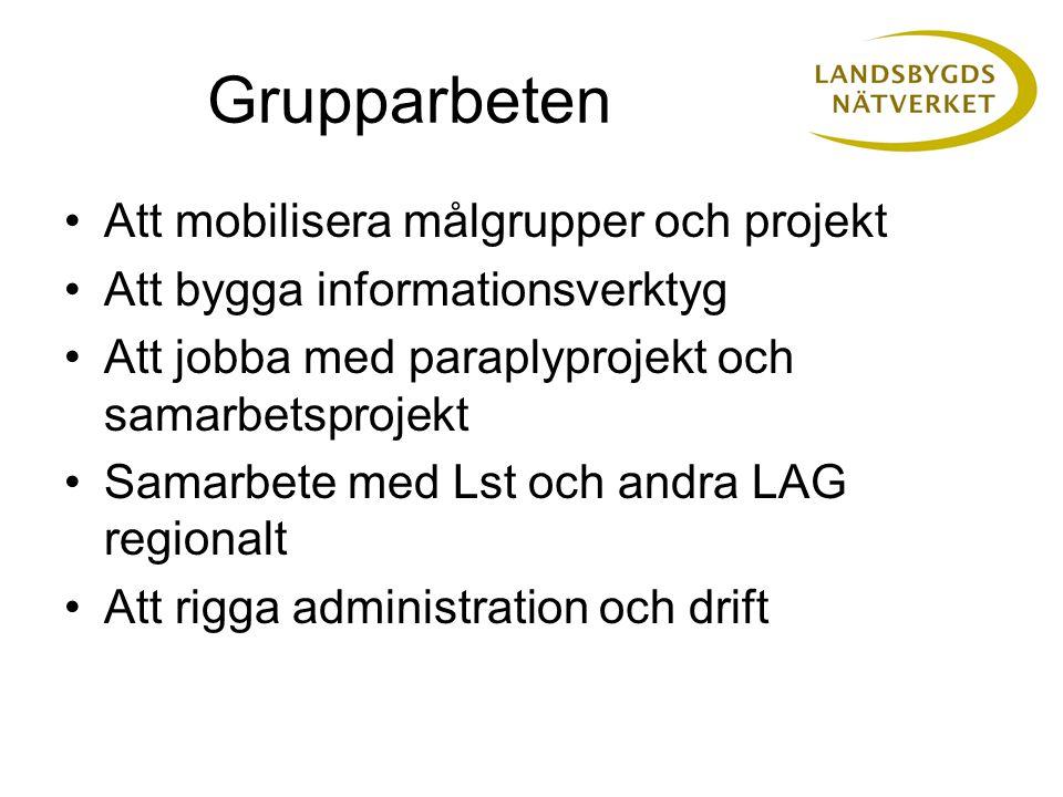 Grupparbeten Att mobilisera målgrupper och projekt Att bygga informationsverktyg Att jobba med paraplyprojekt och samarbetsprojekt Samarbete med Lst o