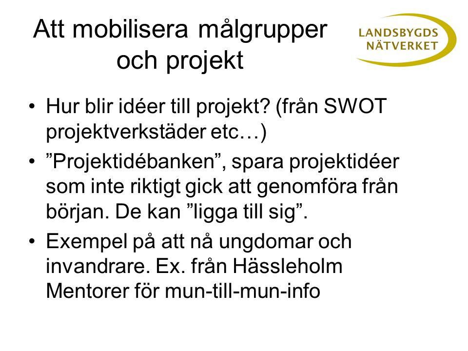 """Hur blir idéer till projekt? (från SWOT projektverkstäder etc…) """"Projektidébanken"""", spara projektidéer som inte riktigt gick att genomföra från början"""