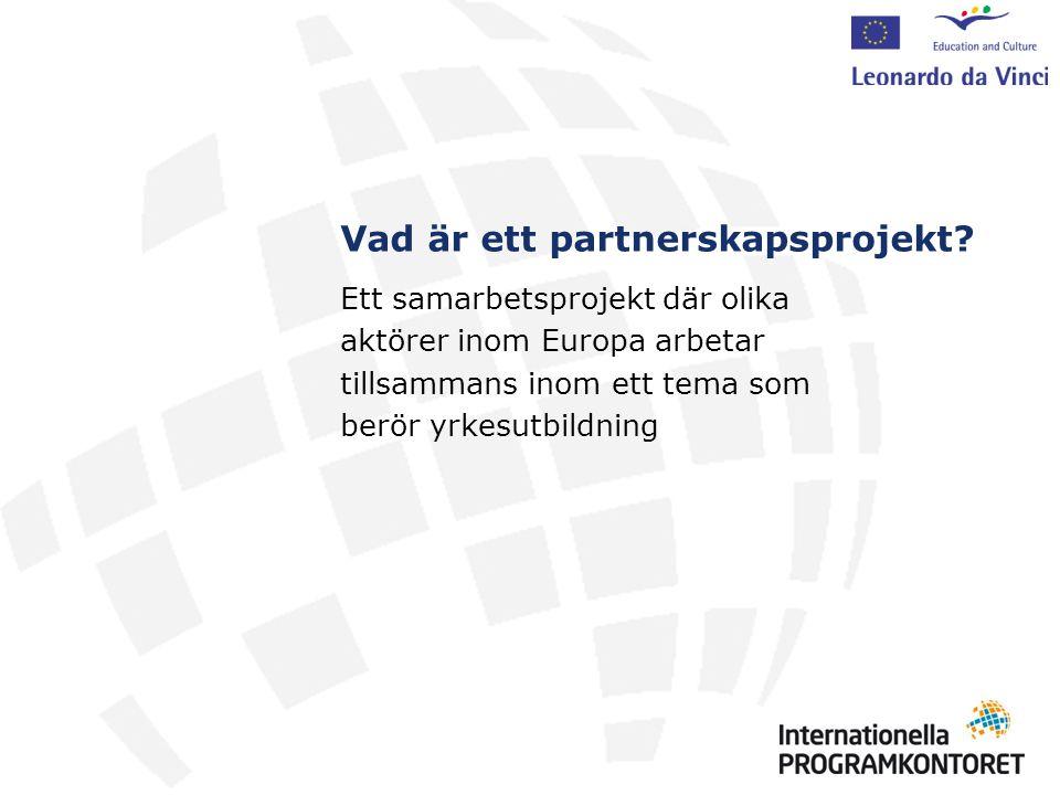 Vad är ett partnerskapsprojekt.