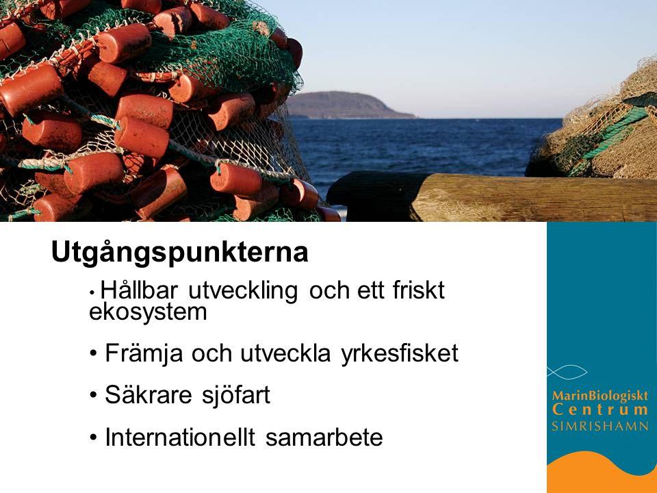 Utgångspunkterna Hållbar utveckling och ett friskt ekosystem Främja och utveckla yrkesfisket Säkrare sjöfart Internationellt samarbete