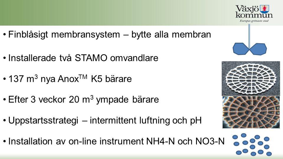 Finblåsigt membransystem – bytte alla membran Installerade två STAMO omvandlare 137 m 3 nya Anox TM K5 bärare Efter 3 veckor 20 m 3 ympade bärare Upps