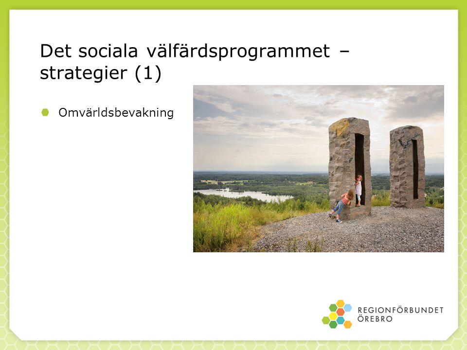 Det sociala välfärdsprogrammet – strategier (1) Omvärldsbevakning