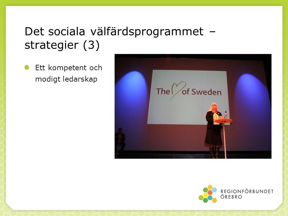 Det sociala välfärdsprogrammet – strategier (3) Ett kompetent och modigt ledarskap