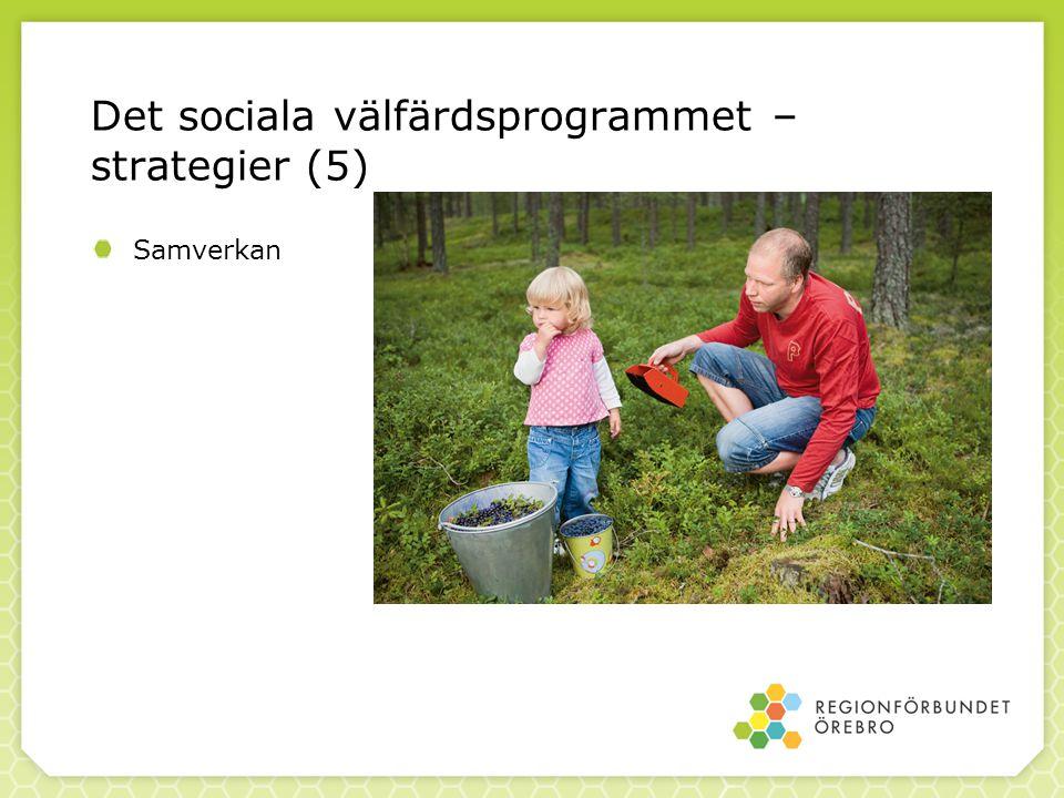 Det sociala välfärdsprogrammet – strategier (5) Samverkan