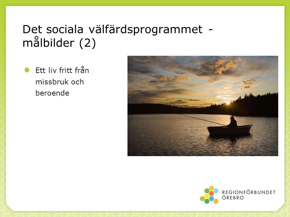 Det sociala välfärdsprogrammet - målbilder (3) Ett aktivt deltagande i samhället för personer med funktionsnedsättning