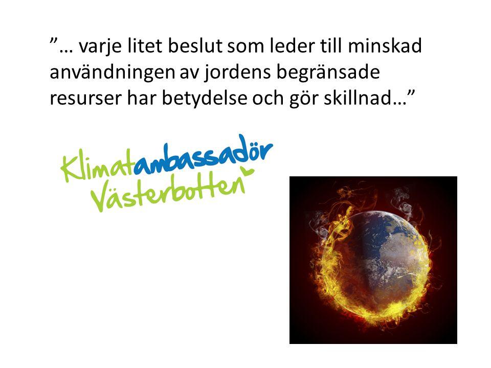 """""""… varje litet beslut som leder till minskad användningen av jordens begränsade resurser har betydelse och gör skillnad…"""""""