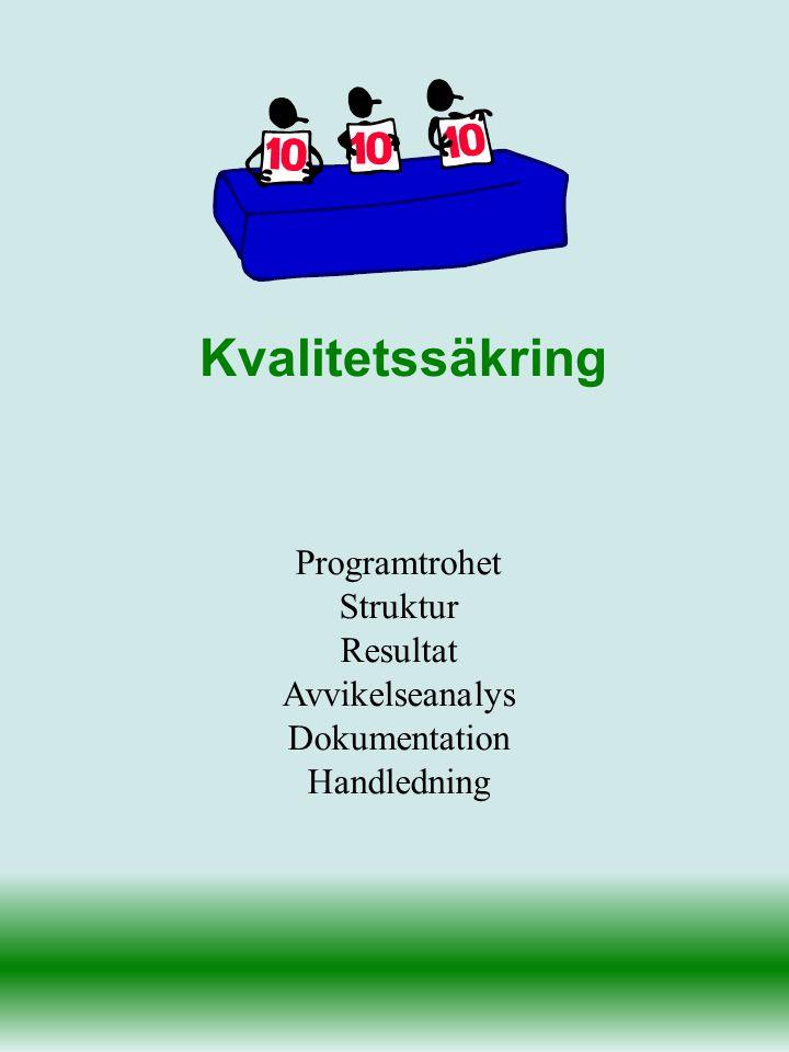 Programtrohet Struktur Resultat Avvikelseanalys Dokumentation Handledning Kvalitetssäkring
