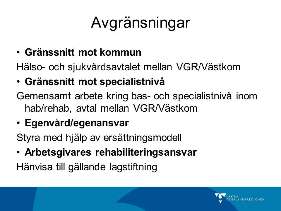 Avgränsningar Gränssnitt mot kommun Hälso- och sjukvårdsavtalet mellan VGR/Västkom Gränssnitt mot specialistnivå Gemensamt arbete kring bas- och speci