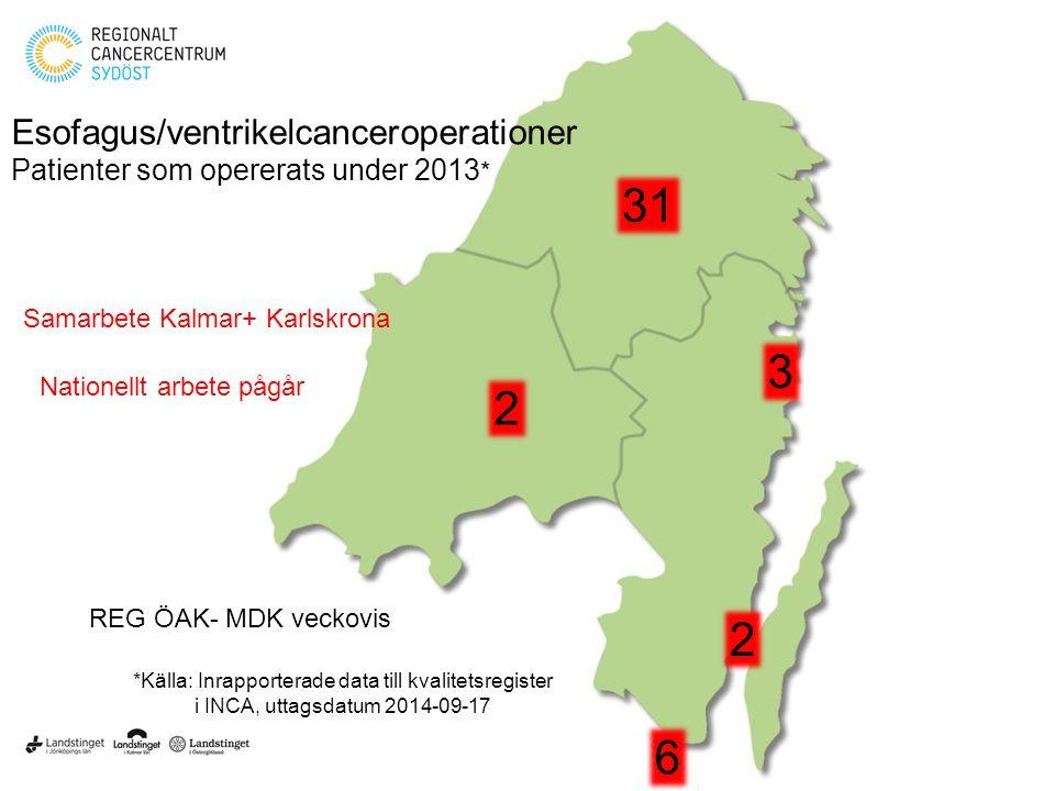 31 2 6 3 Esofagus/ventrikelcanceroperationer Patienter som opererats under 2013 * 2 *Källa: Inrapporterade data till kvalitetsregister i INCA, uttagsd