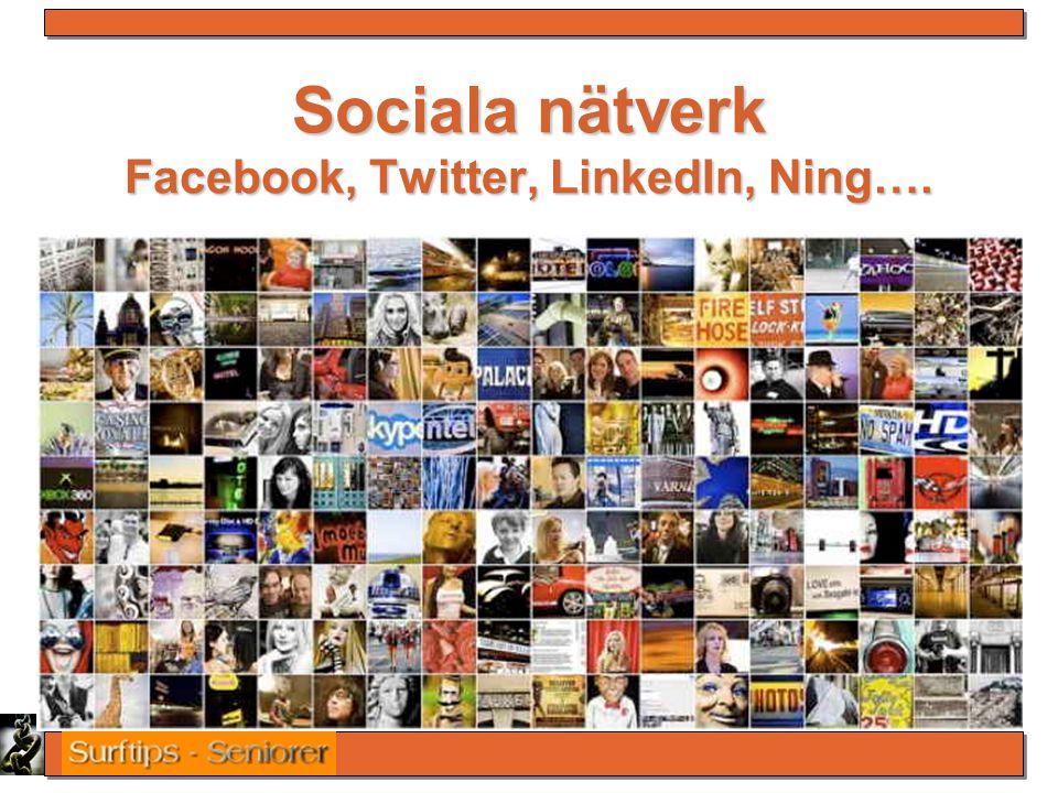 Sociala nätverk Facebook, Twitter, LinkedIn, Ning….