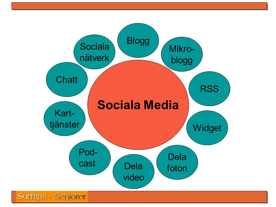 Sociala Media Blogg Widget Dela foton Dela video Kart- tjänster Chatt Sociala nätverk Mikro- blogg RSS Pod- cast