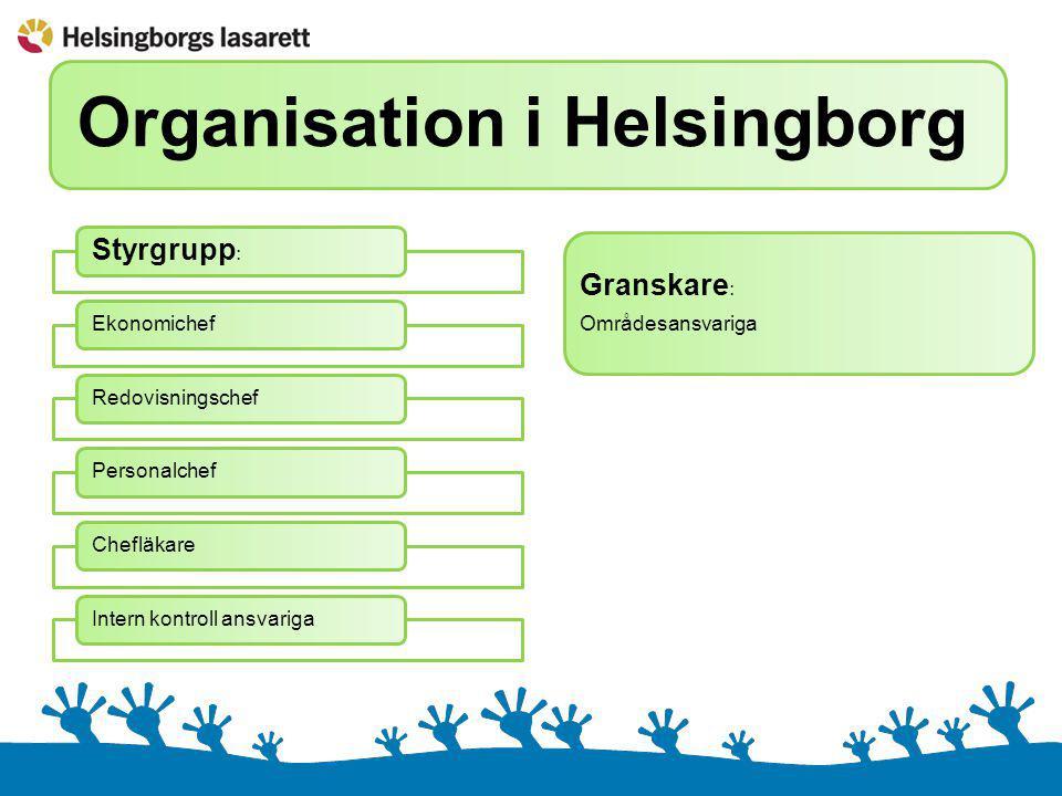 Intern kontroll på Helsingborgs lasarett Ca 20 olika områdenEkonomiBudgetPersonalStrålningLäkemedelPatientsäkerhetLivsmedelSkalskyddSäkerhetInköpIT hårdvaraIT mjukvaraEtc …