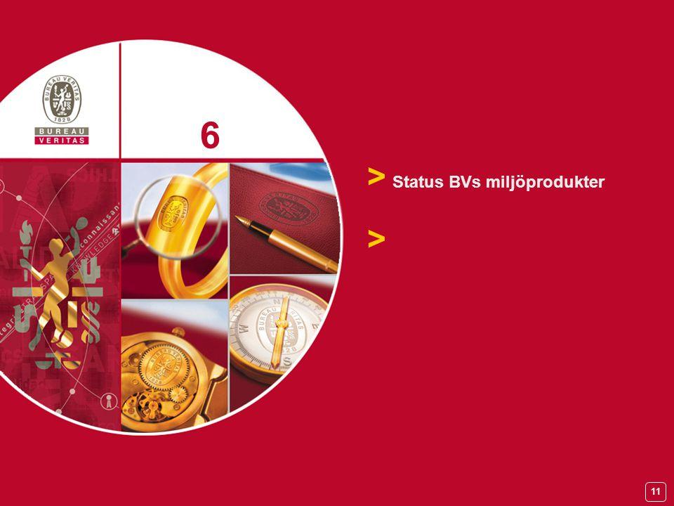 11 > Status BVs miljöprodukter > 6 6