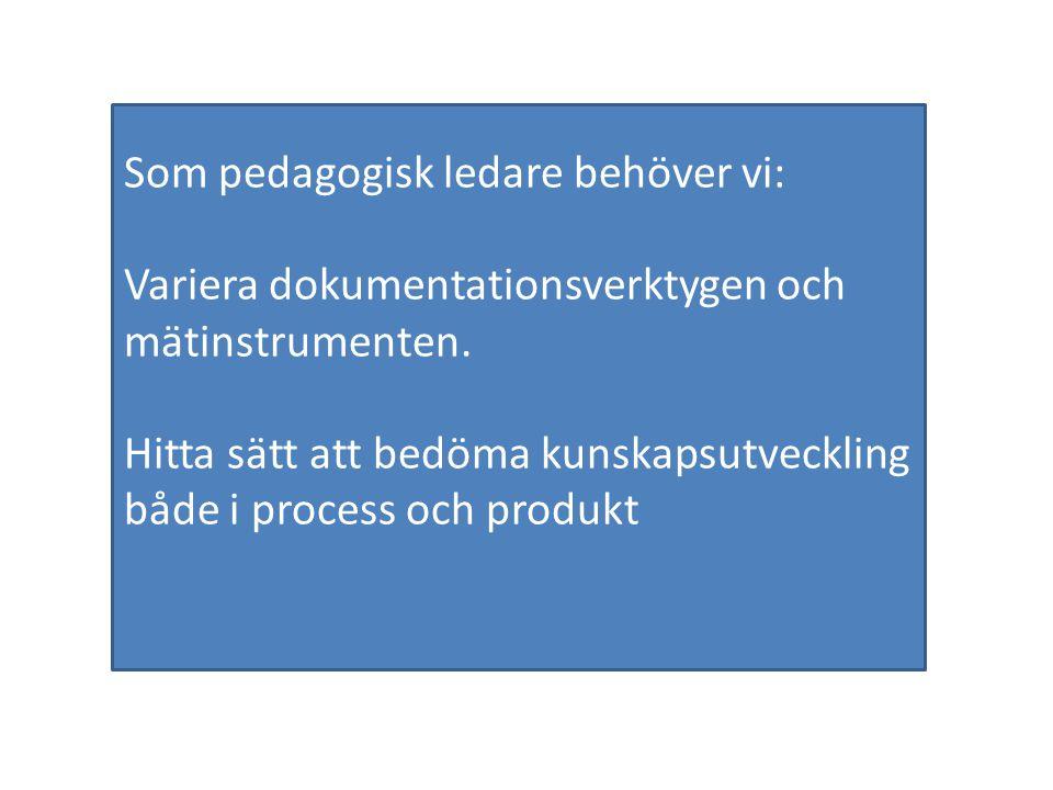 Som pedagogisk ledare behöver vi: Variera dokumentationsverktygen och mätinstrumenten. Hitta sätt att bedöma kunskapsutveckling både i process och pro