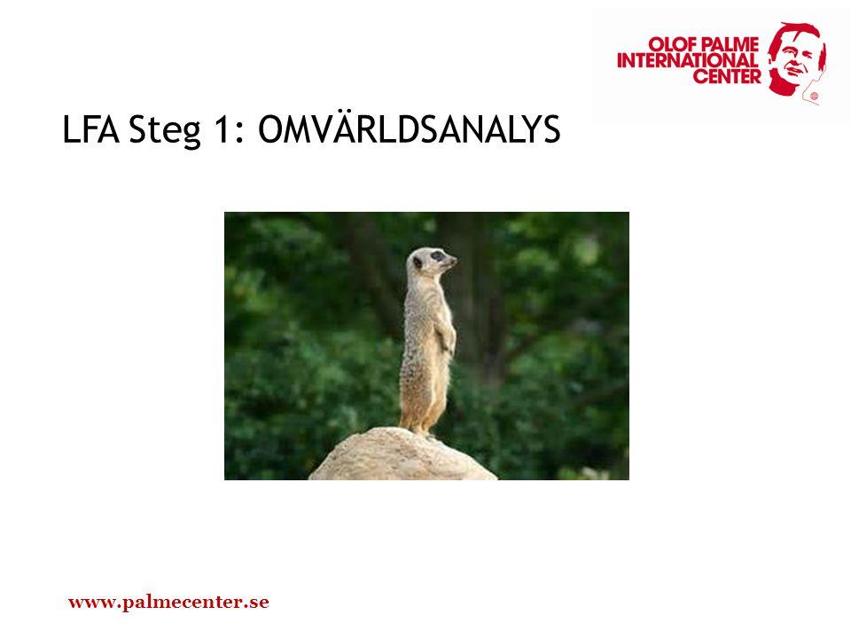 LFA Steg 1: OMVÄRLDSANALYS www.palmecenter.se