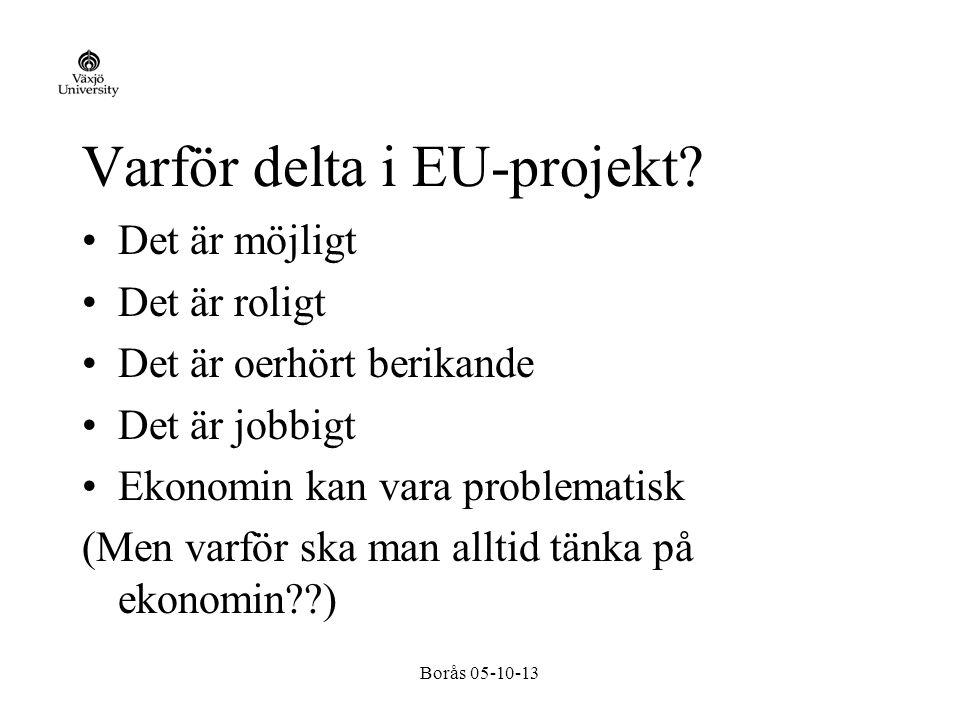 Borås 05-10-13 Varför delta i EU-projekt.