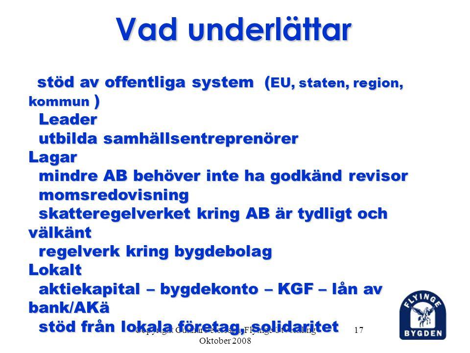 Copyright Gunnar Petersson, Flyinge Utveckling Oktober 2008 17 Vad underlättar stöd av offentliga system ( EU, staten, region, kommun ) stöd av offent