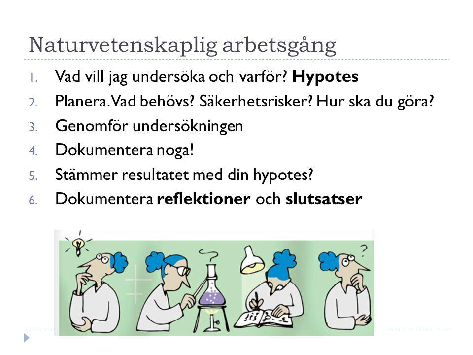 Naturvetenskaplig arbetsgång 1. Vad vill jag undersöka och varför? Hypotes 2. Planera. Vad behövs? Säkerhetsrisker? Hur ska du göra? 3. Genomför under