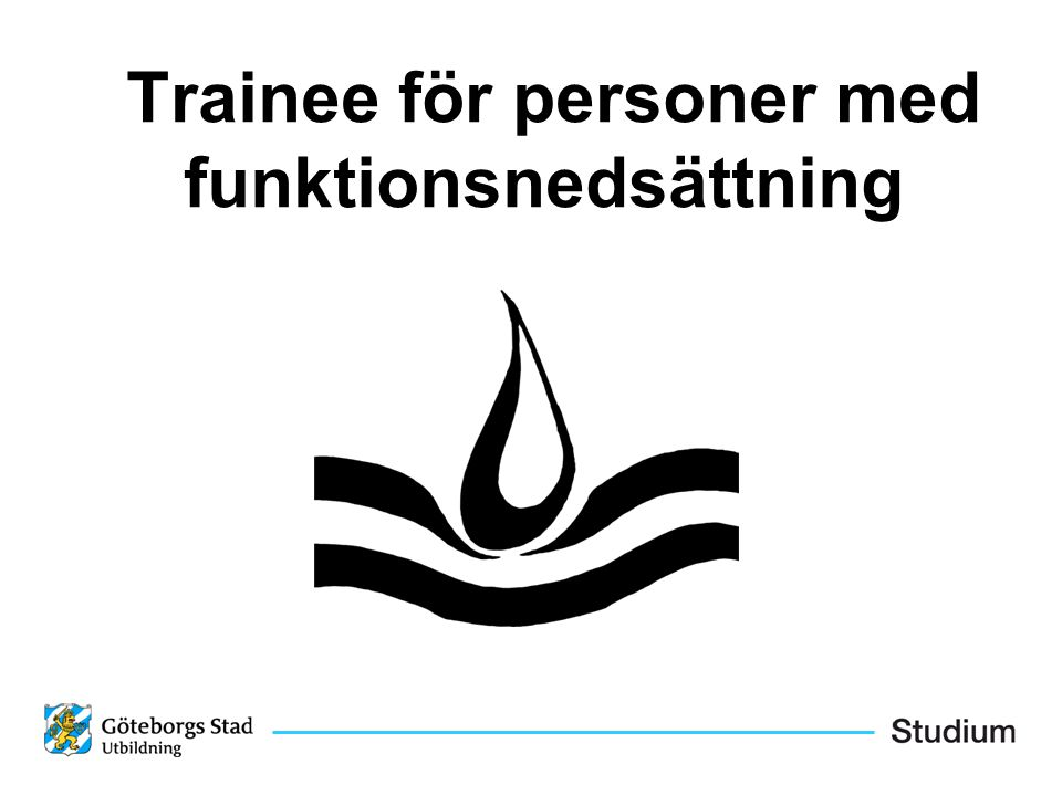 Trainee för personer med funktionsnedsättning