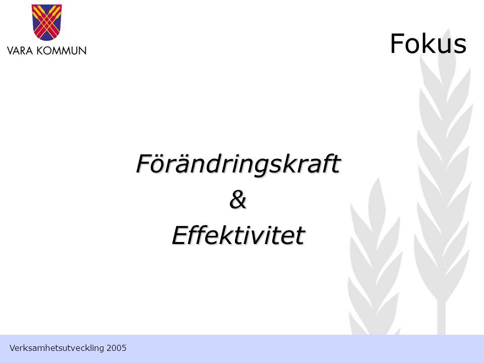 Förändringskraft&Effektivitet Fokus Verksamhetsutveckling 2005