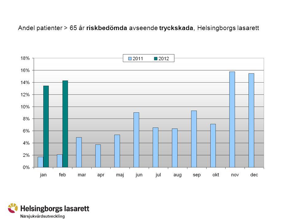 Närsjukvårdsutveckling Andel patienter med risk för tryckskada (> 65 år) där standardvårdplan upprättats, Helsingborgs lasarett