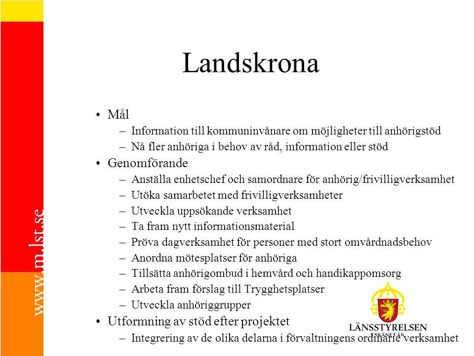 Landskrona Mål –Information till kommuninvånare om möjligheter till anhörigstöd –Nå fler anhöriga i behov av råd, information eller stöd Genomförande