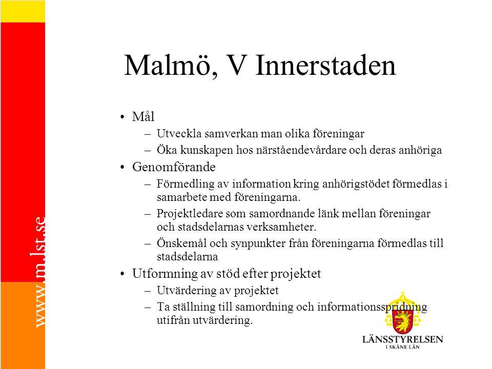 Malmö, V Innerstaden Mål –Utveckla samverkan man olika föreningar –Öka kunskapen hos närståendevårdare och deras anhöriga Genomförande –Förmedling av