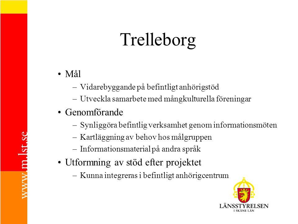 Trelleborg Mål –Vidarebyggande på befintligt anhörigstöd –Utveckla samarbete med mångkulturella föreningar Genomförande –Synliggöra befintlig verksamh