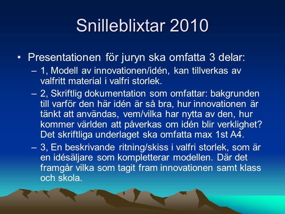 Snilleblixtar 2010 Presentationen för juryn ska omfatta 3 delar: –1, Modell av innovationen/idén, kan tillverkas av valfritt material i valfri storlek.