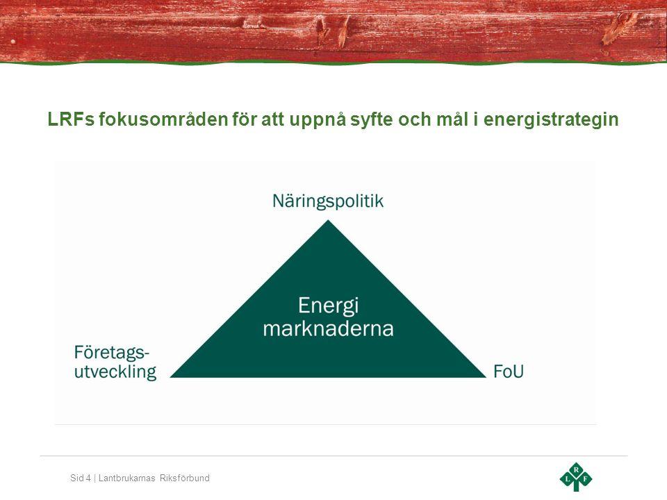 Sid 4 | Lantbrukarnas Riksförbund LRFs fokusområden för att uppnå syfte och mål i energistrategin