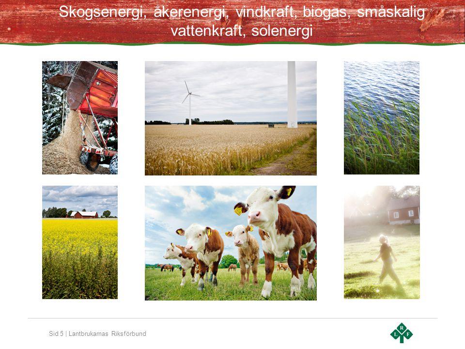 Sid 5 | Lantbrukarnas Riksförbund Skogsenergi, åkerenergi, vindkraft, biogas, småskalig vattenkraft, solenergi