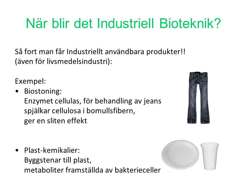 När blir det Industriell Bioteknik? Så fort man får Industriellt användbara produkter!! (även för livsmedelsindustri): Exempel: Biostoning: Enzymet ce
