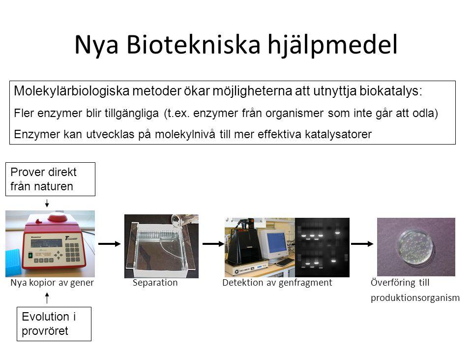 Nya kopior av generSeparationDetektion av genfragmentÖverföring till produktionsorganism Nya Biotekniska hjälpmedel Molekylärbiologiska metoder ökar m
