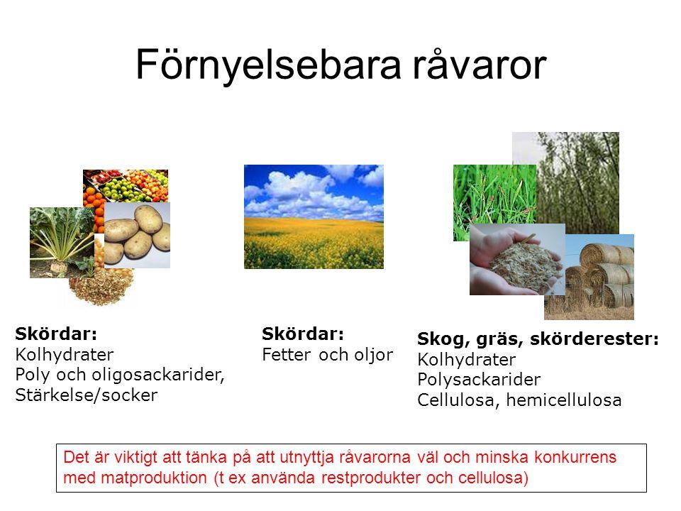Förnyelsebara råvaror Skördar: Kolhydrater Poly och oligosackarider, Stärkelse/socker Skördar: Fetter och oljor Skog, gräs, skörderester: Kolhydrater