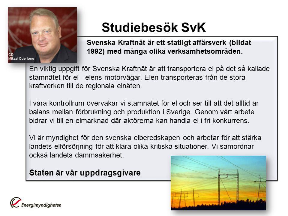 Svenska Kraftnät är ett statligt affärsverk (bildat 1992) med många olika verksamhetsområden.
