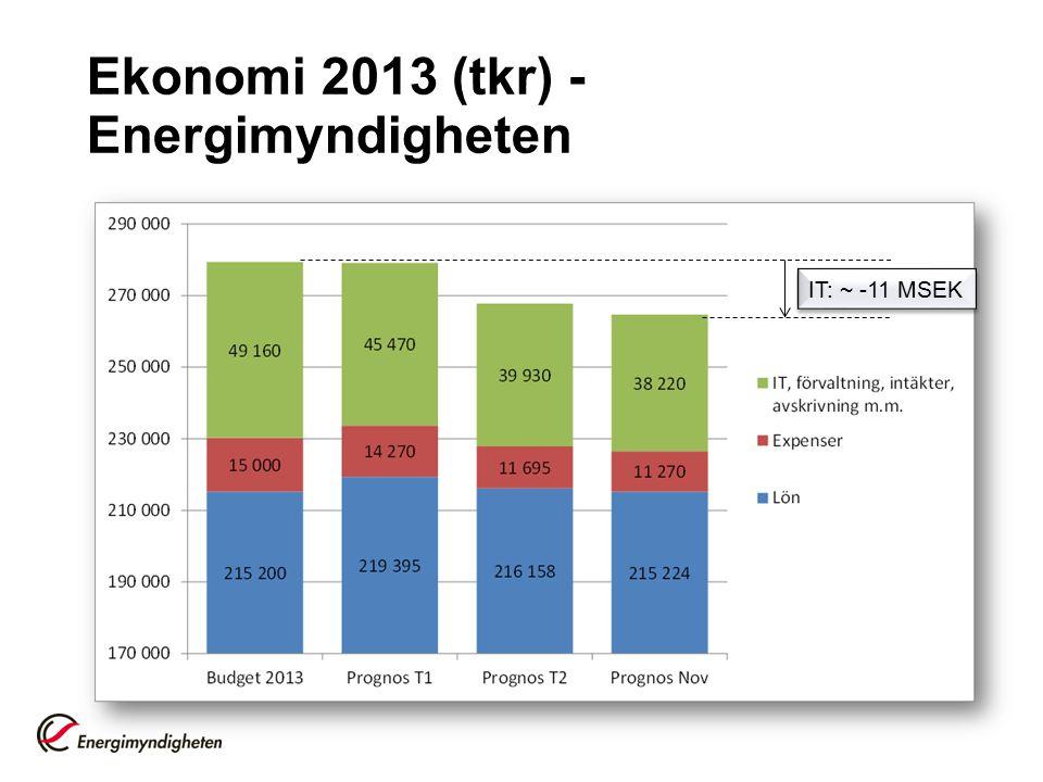 Ekonomi 2013 (tkr) - Energimyndigheten IT: ~ -11 MSEK