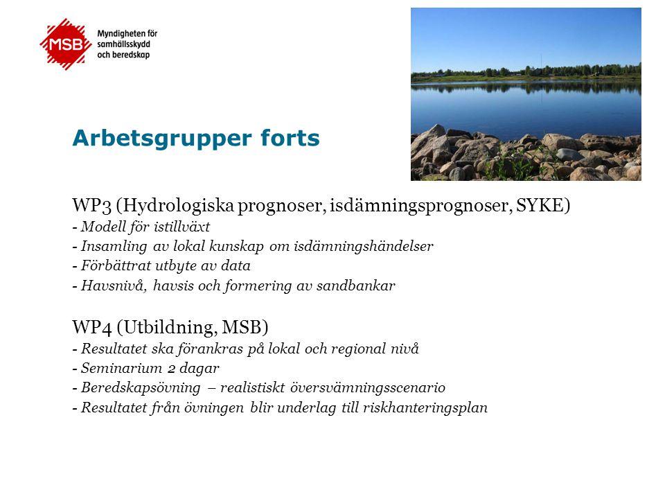 Arbetsgrupper forts WP3 (Hydrologiska prognoser, isdämningsprognoser, SYKE) - Modell för istillväxt - Insamling av lokal kunskap om isdämningshändelser - Förbättrat utbyte av data - Havsnivå, havsis och formering av sandbankar WP4 (Utbildning, MSB) - Resultatet ska förankras på lokal och regional nivå - Seminarium 2 dagar - Beredskapsövning – realistiskt översvämningsscenario - Resultatet från övningen blir underlag till riskhanteringsplan
