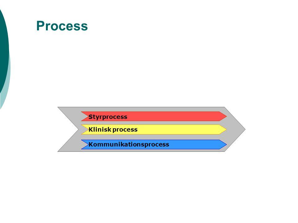 Process Kommunikationsprocess Styrprocess Klinisk process