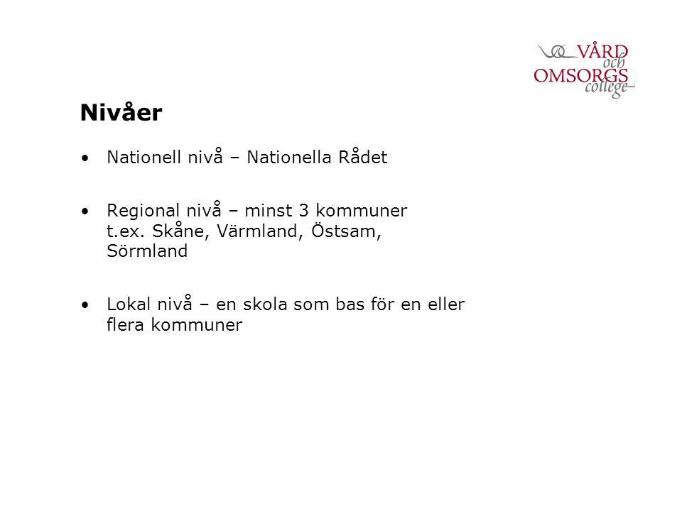 Nivåer Nationell nivå – Nationella Rådet Regional nivå – minst 3 kommuner t.ex.