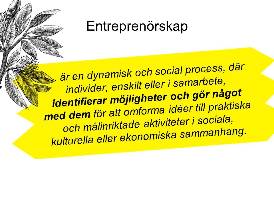 Entreprenörskap … är en dynamisk och social process, där individer, enskilt eller i samarbete, identifierar möjligheter och gör något med dem för att