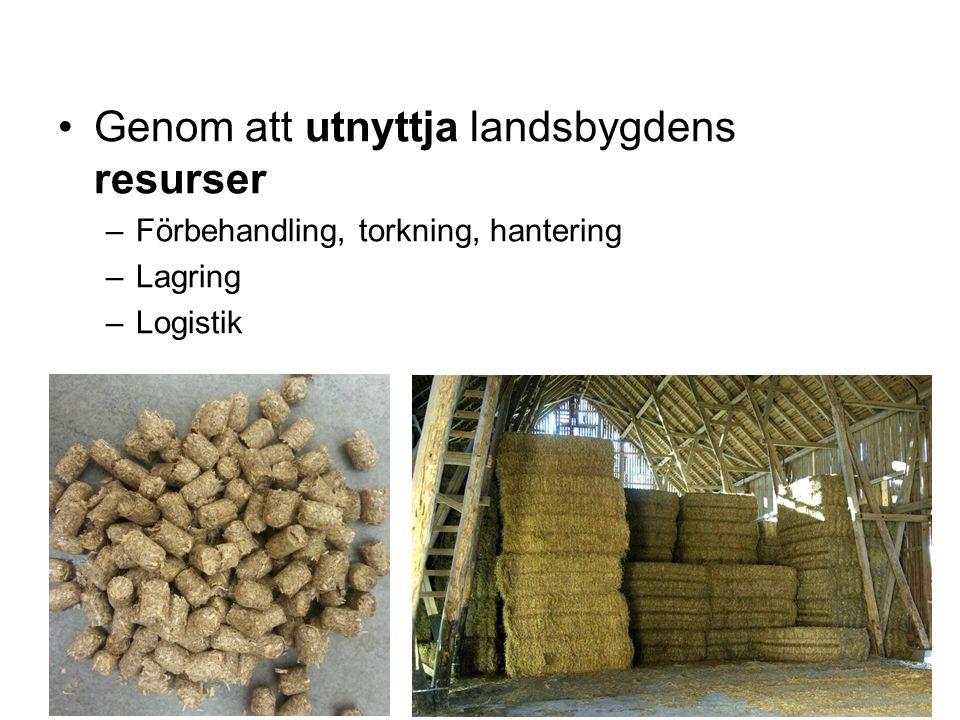 Genom att utnyttja landsbygdens resurser –Förbehandling, torkning, hantering –Lagring –Logistik