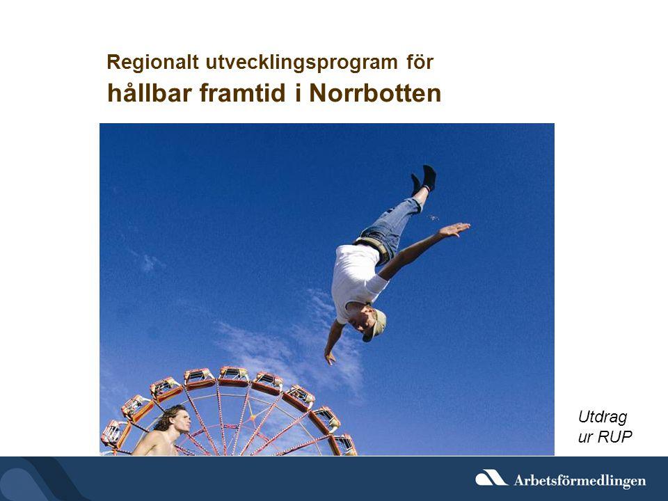 Regionalt utvecklingsprogram för hållbar framtid i Norrbotten Utdrag ur RUP