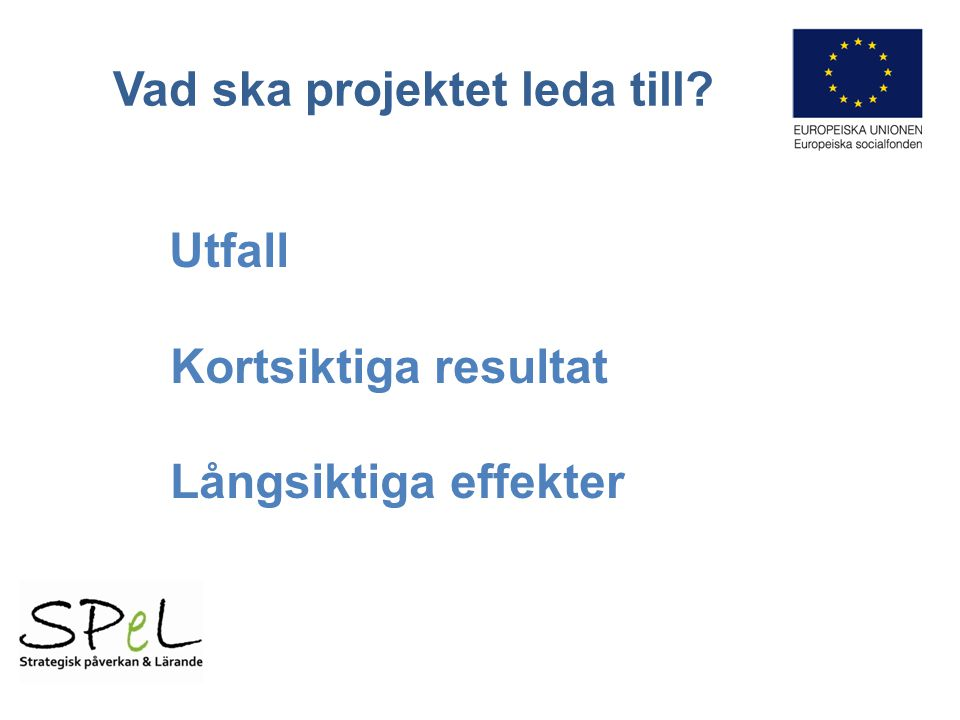 Vad ska projektet leda till Utfall Kortsiktiga resultat Långsiktiga effekter