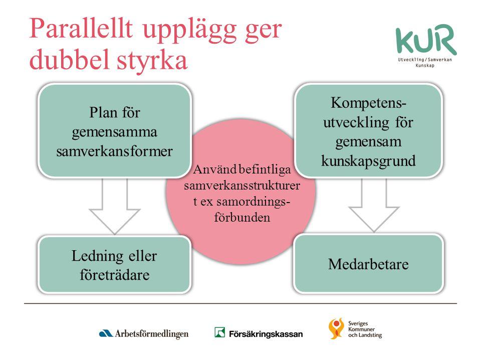 Plan för gemensamma samverkansformer Plan för konkreta åtgärder som ska stödja vägen till sysselsättning, arbete eller studier Förankrat hos ledningen Processtöd och föreläsningar Utgångspunkten är kommunens inventering